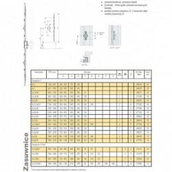 Zasuwnica 3 WIE 2 MV TS K25